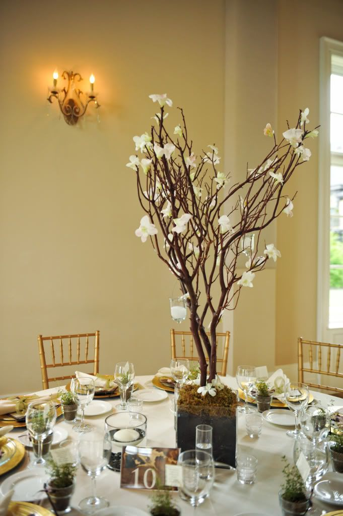 Making Manzanita Branch Centerpieces As you will see, Manzanita branches  make for some lovely, and sometimes, very elegant wedding recepti. - 122 Best Party- Manzanita Branches Images On Pinterest