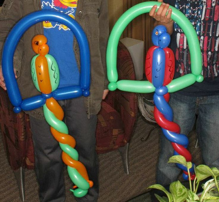 I'll teach you how to make a balloon parrot on a swing for $5, on fiverr.com