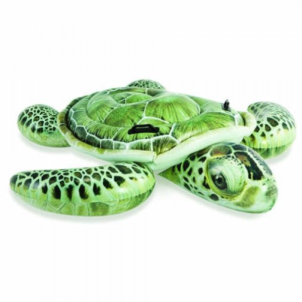 Intex opblaasbare schildpad met realistische print