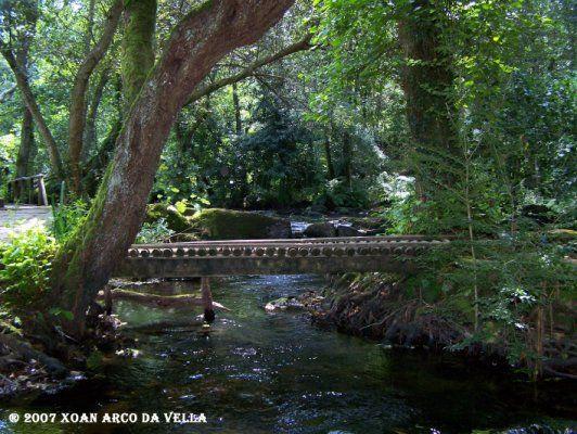 XOAN ARCO DA VELLA: REFUGIO DE VERDES - CORISTANCO