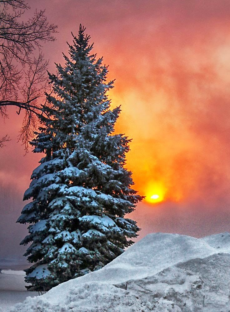 Beautiful Winter Outfit Www Pinterest Com: 98802 Best .Our Amazing World! Images On Pinterest