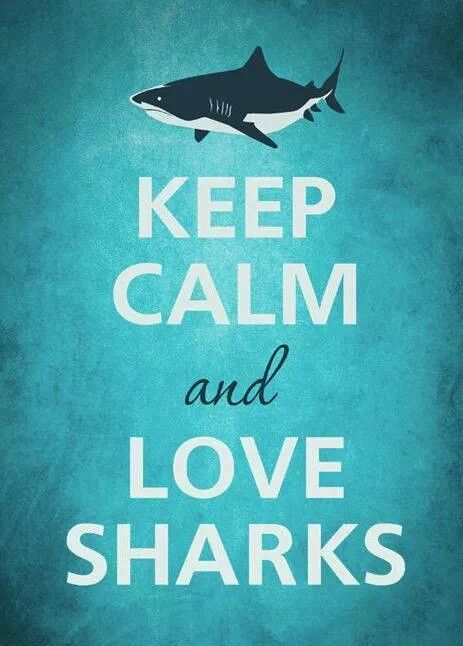 I like the poster but there is no way I'm keeping calm around sharks.