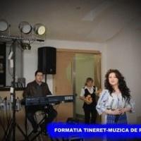 Formatia Tineret - Muzica de petrecere (Rip) [Album] Download