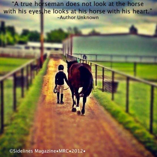 115 Best Images About Horse Quotes On Pinterest