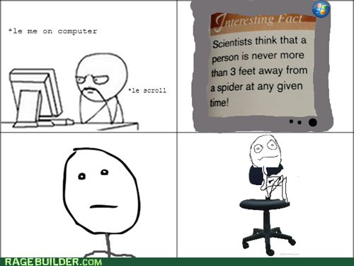 If you have a fear of spiders, I have bad news for you.  rage comics - Never Leaving This Chair