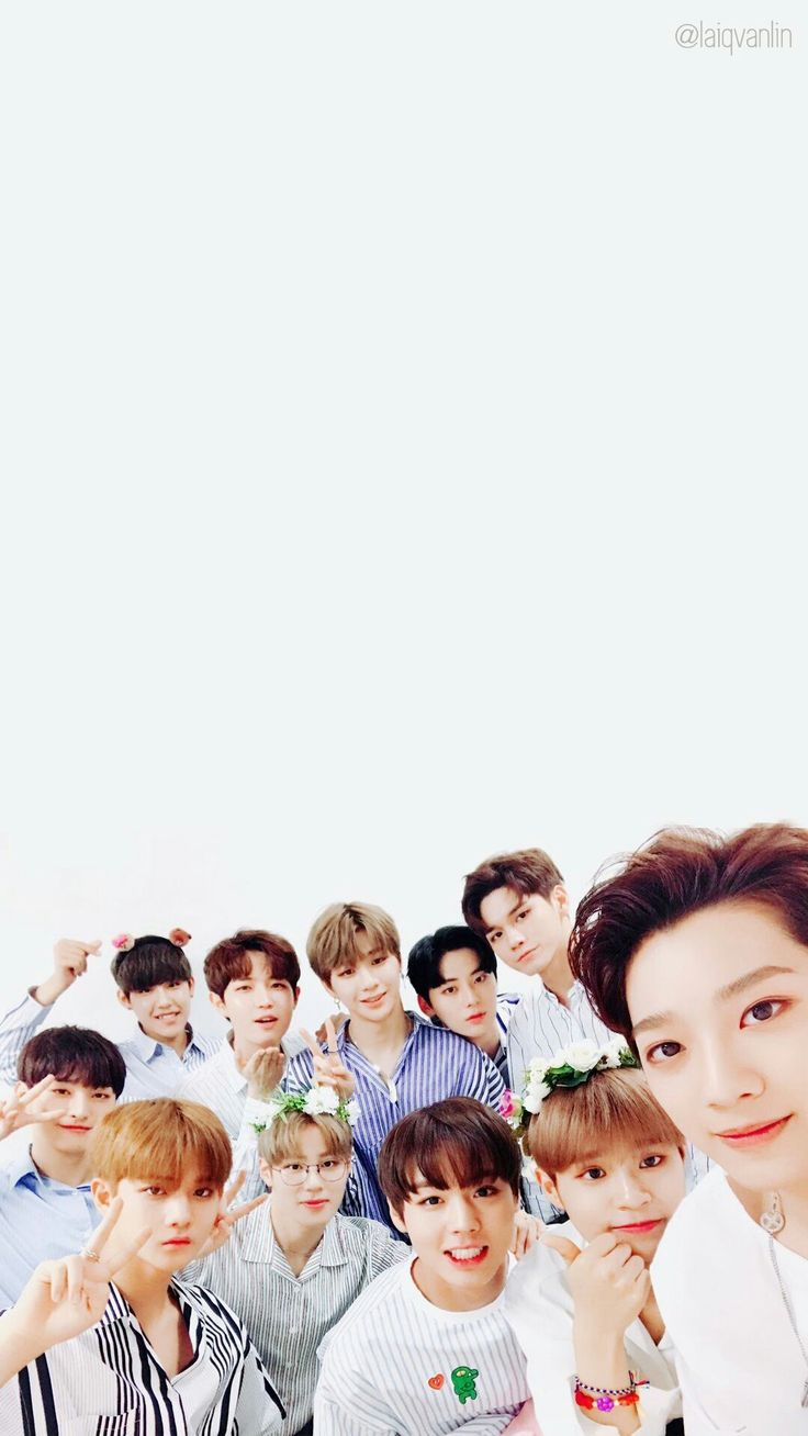 Wanna one. Credit to the owner