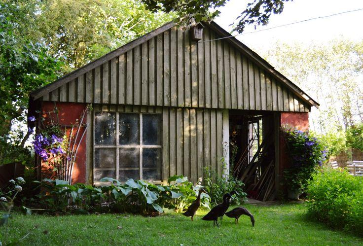 Havehus der skal forvandles til et orangeri
