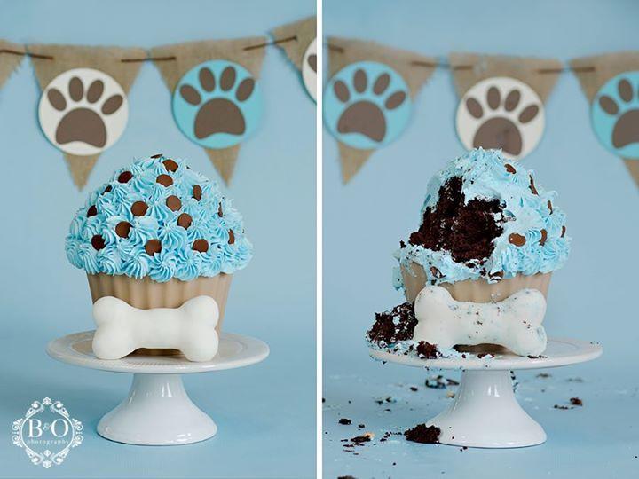 12 best Dog Birthdays images on Pinterest Dog cakes Dog