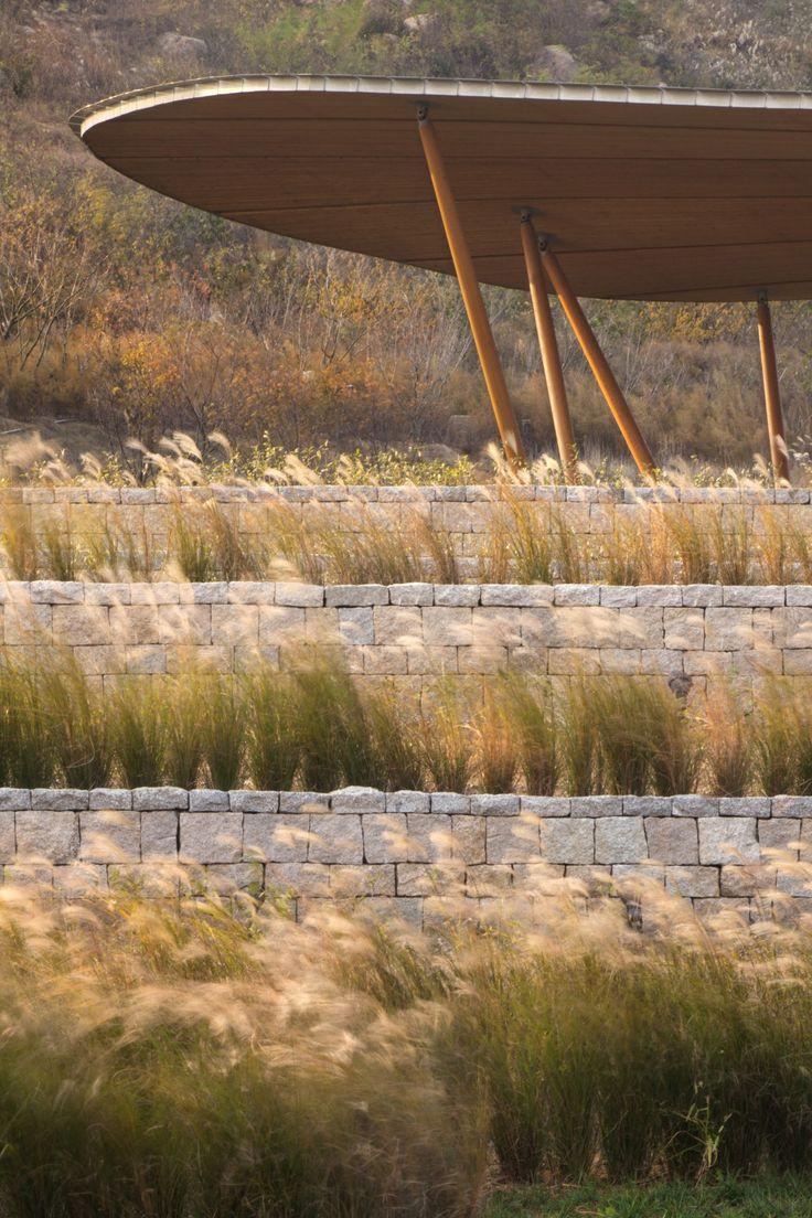 mur pierre seche et stipa tenuifolia