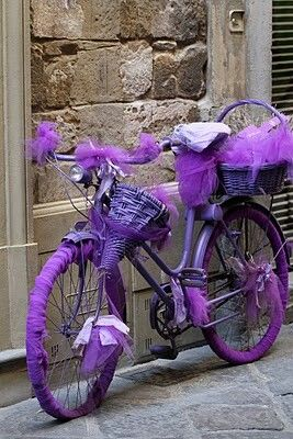 Who took a picture of my bicycle?