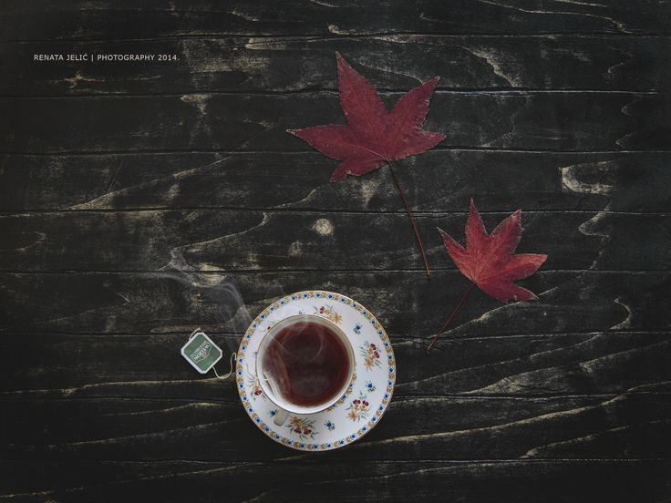 Autumn is here! by Renata Jelić on 500px