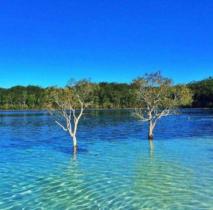 Lake McKenzie in Fraser Island,  Queensland, Australia