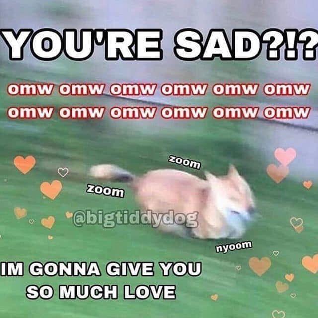 Pin By Esperanza Varella On Reaction Memes Cute Love Memes Cute Memes Wholesome Memes