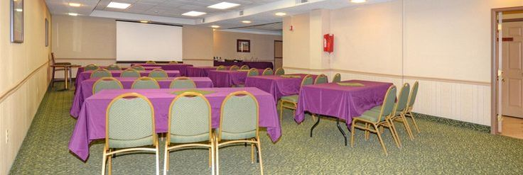 Hotel conference rooms have more uses than business meetings. My last family reunion was in a hotel, and we held a get together in one of their conference rooms. The staff were very understanding about noise. We were insulated from the guests' rooms, I believe.