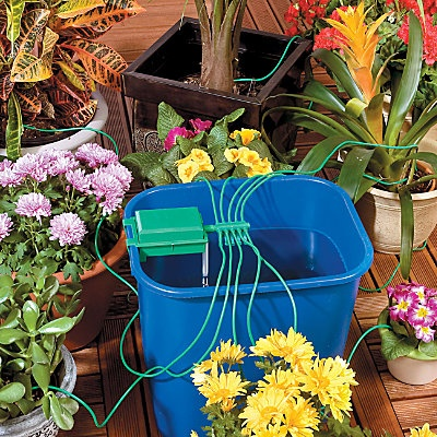 Automatic Plant Watering System With Bucket Plant