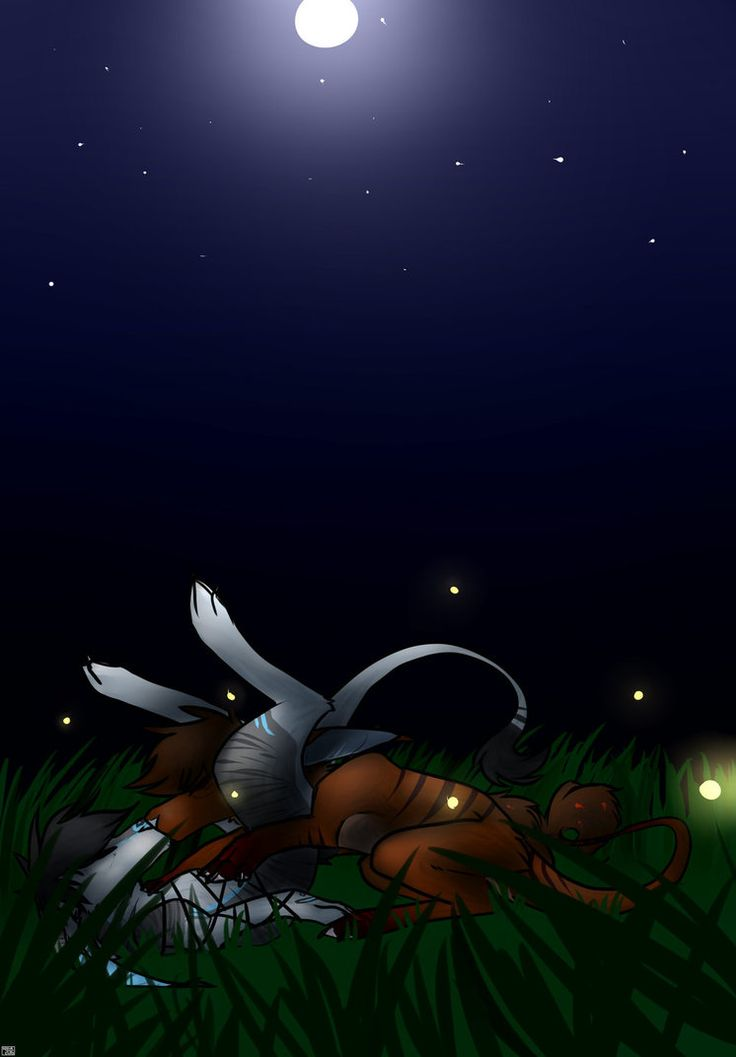 Just another calm night by TheSazja