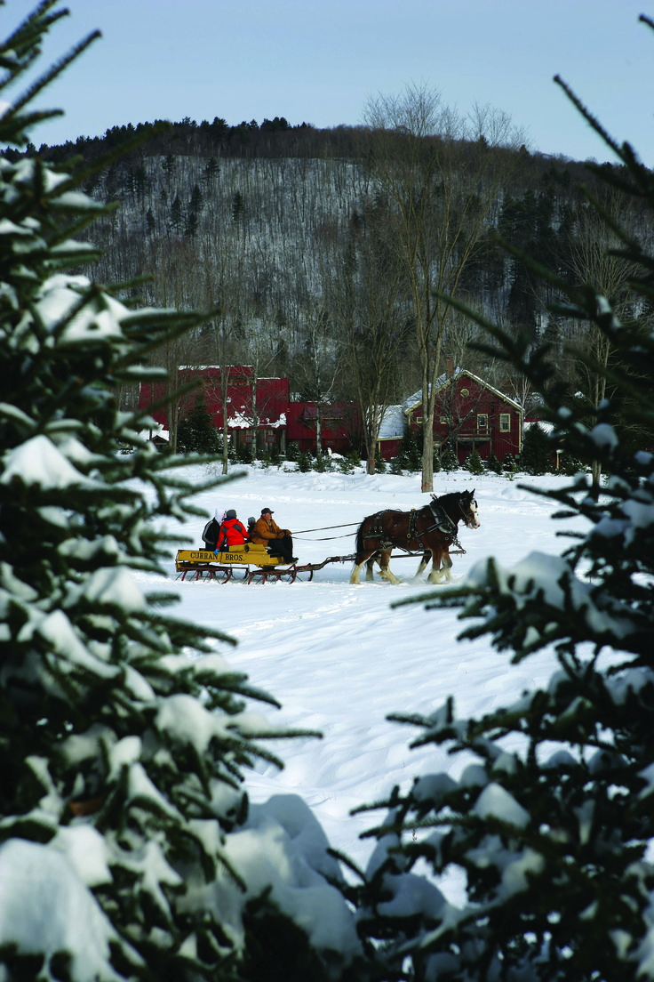 A horse-drawn sleigh ride in snowy Vermont?  It doesn't get any better.