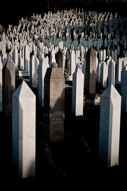 That mad game the world loves to play. Unending graveyards in Sarajavo, Bosnia.