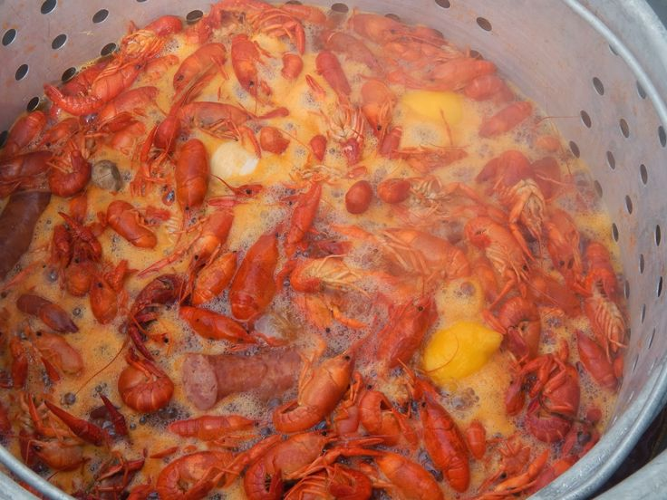 It's that time of year, again! Crawfish Season. Unfortunately,due to the unusual cold weather here in the South Mudbugs are a little scarce. If your thinking about having a crawfish boil it will cost youa little more than usual.Prices are up to $5 a pound costing an average $100 dollars for a sack of these…
