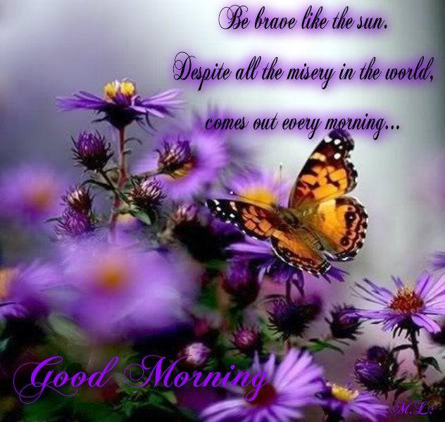 Buď statečný jako slunce. Navzdory všemu trápení na světě, vychází každé ráno..