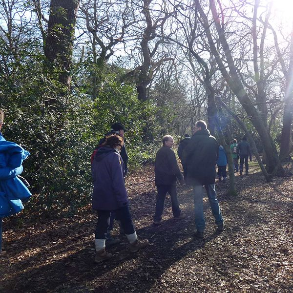 Enjoy a relaxed nature walk through the beautiful parkland and woodland of Cornbury Park. Discover the trees, plants, birds and animals living in this habitat through interpretation from zoologistBrenna Boyle of Wild Capital. Learn how to identify different species and uncover the fascinating life histories of plants and animals. Sunday: 10am – Family Walk – …