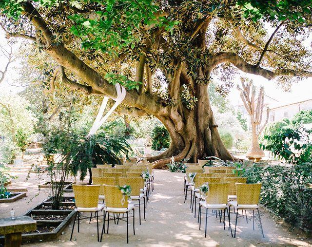 Beautiful Location For Wedding Ceremony Botanical Garden In Lisbon Portugal Portugalweddingvenues Portugalweddingplanning Weddingofyourdream Weddinginpo