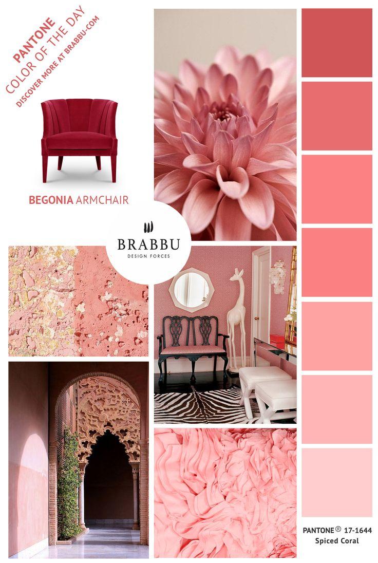 Brabbu leading trends! Find here the best interior design options for your upcoming projects!   Luxury Furniture   Interior Design   Home Decor   Hospitality Design   #luxuryfurniture #interiordesignlovers #inspirationandideas   more @ http://www.brabbu.com/?utm_source=1imagem1000inspiracoes&utm_medium=pinterest&utm_content=BBsv