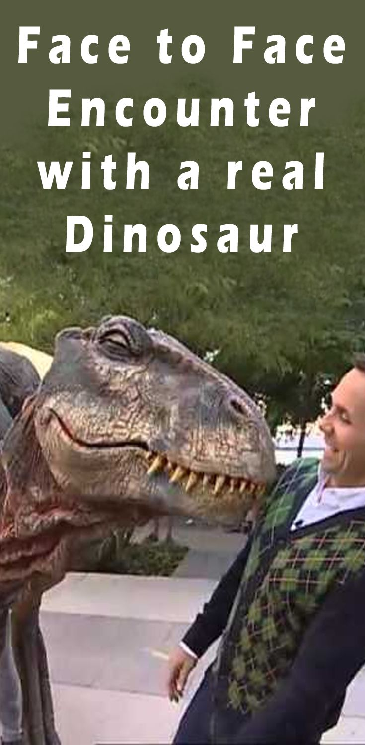 You cannot get closer to a dinosaur then this? Realistic dinosaur suits!