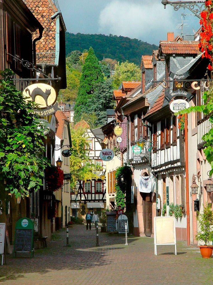 Neustadt is one of the quaint old towns on the wine road, Germany