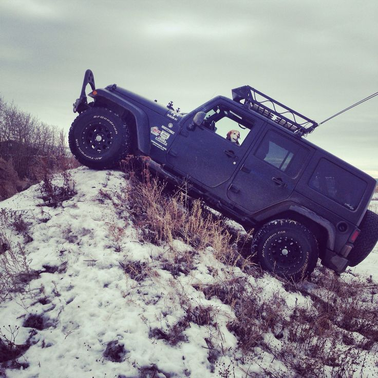 My beagle Ruby up to no good in my Jeep Wrangler climbing hills off roading in a bit of snow and mud in Edmonton Alberta