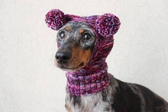 Knitting Pattern Small Dog Hat Dachshund Hat Mini Dachshund Hat Awesome Dog Hat Knitting Pattern