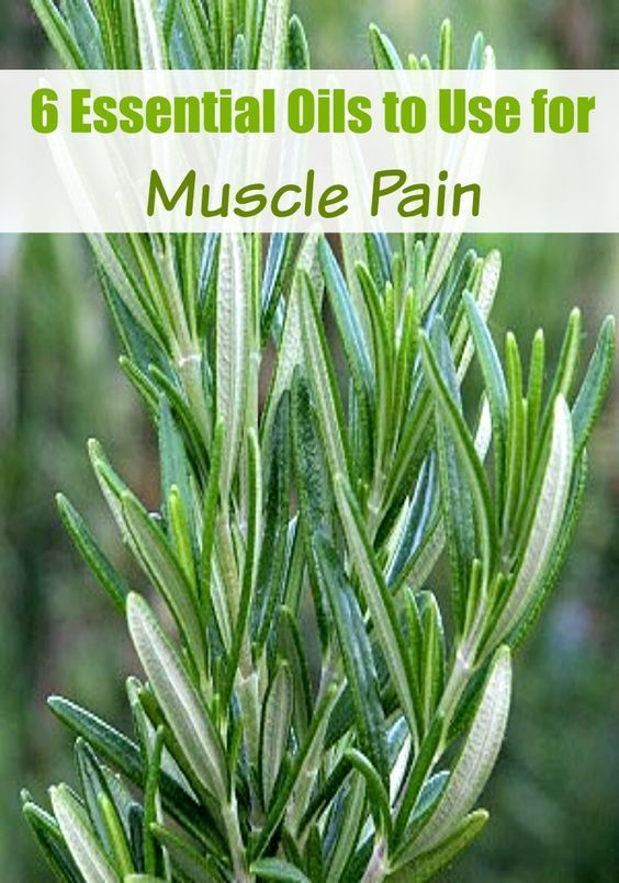 There are many homeopathic remedies to help ease the stiffness and soreness that you might not have known about. Here are six essential oils to use for muscle pain that can be used alone or together with another essential oil for a powerful, yet relaxing combination.