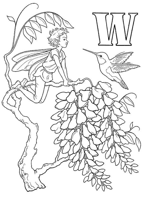 Fairy Alphabet Darcy May W