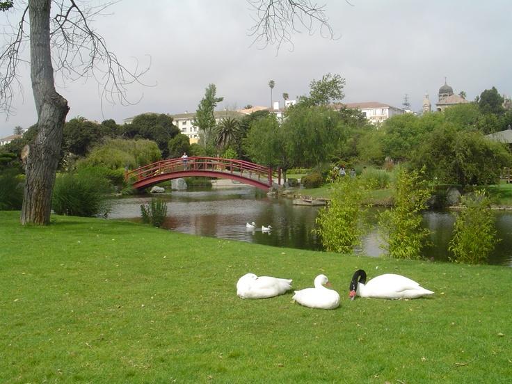 Parque Jardín del Corazón (también conocido como Parque Japonés) en La Serena. Foto de Javier Muñoz Salinas.