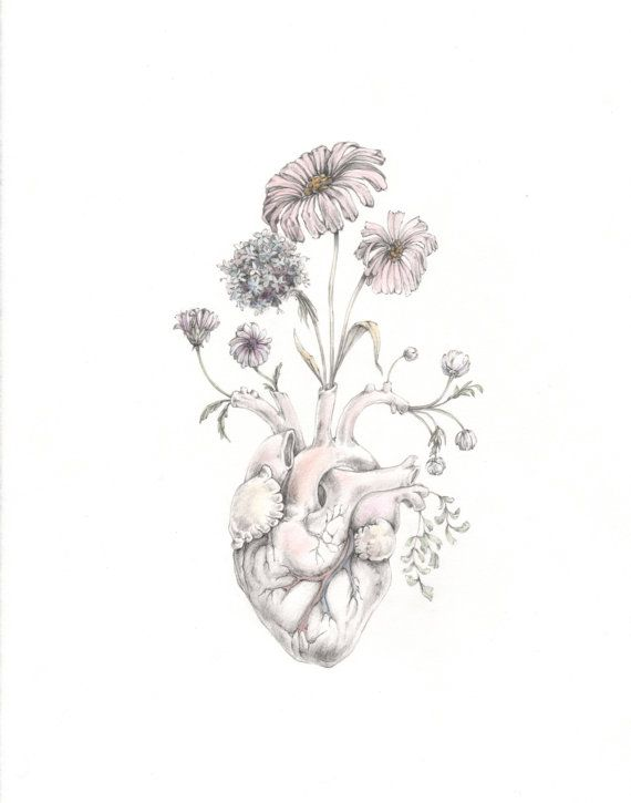 """8x10"""" PRINT of original watercolor/graphite drawing """"Blooming Heart""""- painting, art, anatomy, valentine, floral on Etsy, $20.00"""