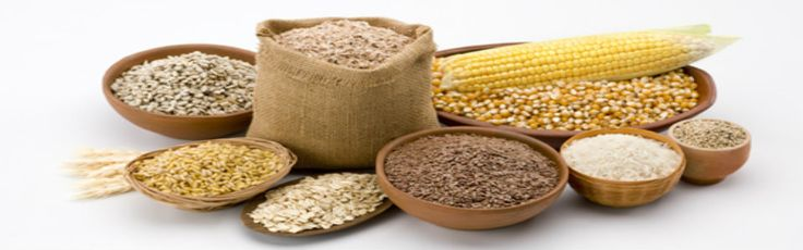 We are renowned wholesale suppliers, importers and  exporters of cereals and pulses in India.