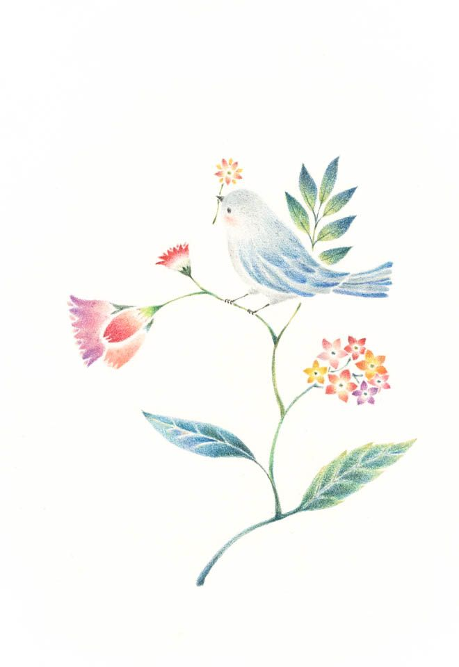 """Little Water Blue Bird and Flowers"" −RiLi, picture book, illustration, design ___ ""水色の小鳥と草花"" −リリ, 絵本, イラスト, デザイン ...... #bird  #flower #鳥 #花"