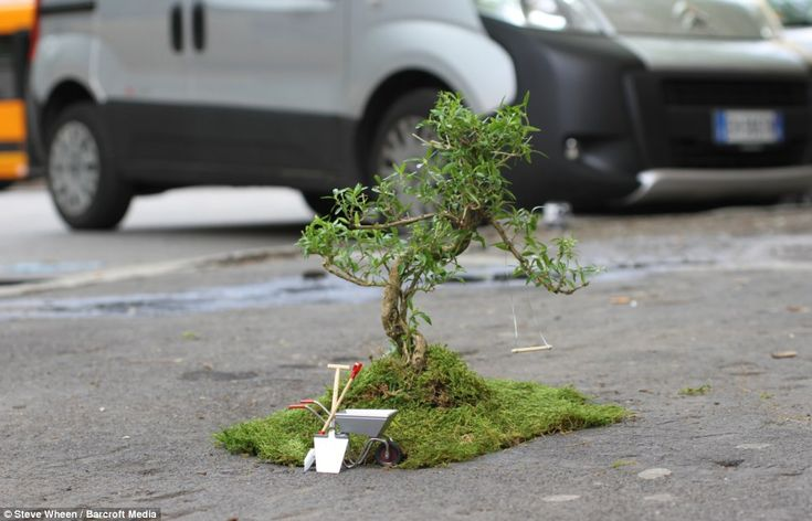 Urban gardener Steve Wheen covers up a pothole in Milan with a miniature tree complete with a miniature swing http://restreet.altervista.org/steve-wheen-ripara-le-buche-stradali-con-mini-giardini/