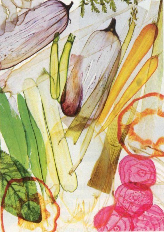 legumes vegetables transparence de Pierre-François Couderc