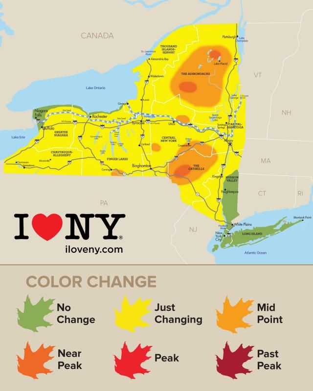 9/20-9/27/17 Fall Foliage in New York | Autumn Leaves, Scenic Drives