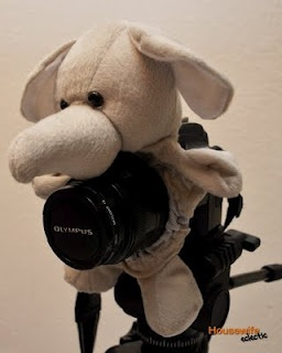 how to make a camera buddy: Kids Smile, Camera Lens, Photographers Kids, Housewife Eclectic, Lens Buddy, Lens Pals, Great Ideas, Stuffed Animal, Diy Camera