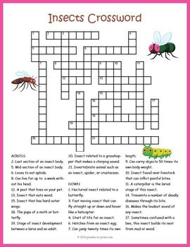 105 best images about crosswords for kids on pinterest early finishers french words and fill. Black Bedroom Furniture Sets. Home Design Ideas
