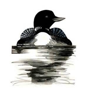 loon clip art - Yahoo! Canada Image Search Results   cartoons ...