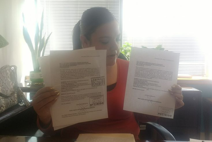 Yo entregué de manera puntual mis permisos sin goce de sueldo para ser diputada: Ma. Antonieta Mendoza   El Puntero