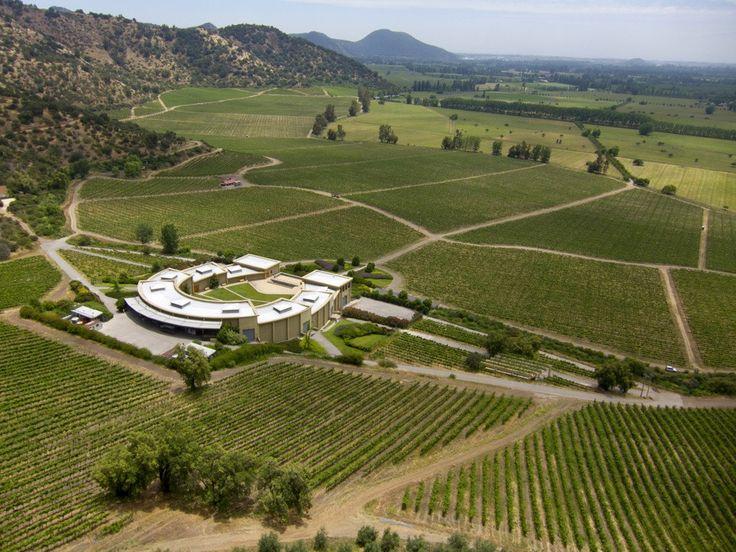 Da luglio 2017, l'azienda vinicola cilena Haras de Pirque è interamente di proprietà degli Antinori;già parzialmente condotta dalla famiglia dal 2003.