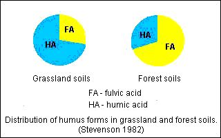 The humus of forest soils is characterized by a high content of fulvic acids while the humus of peat and grassland soils is high in humic acids.(see figure) The humic acid / fulvic acid ratio usually, but not always, decreases with increasing depth.