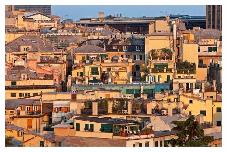 Genova  I tetti del centro storico, la nostra magica casbah