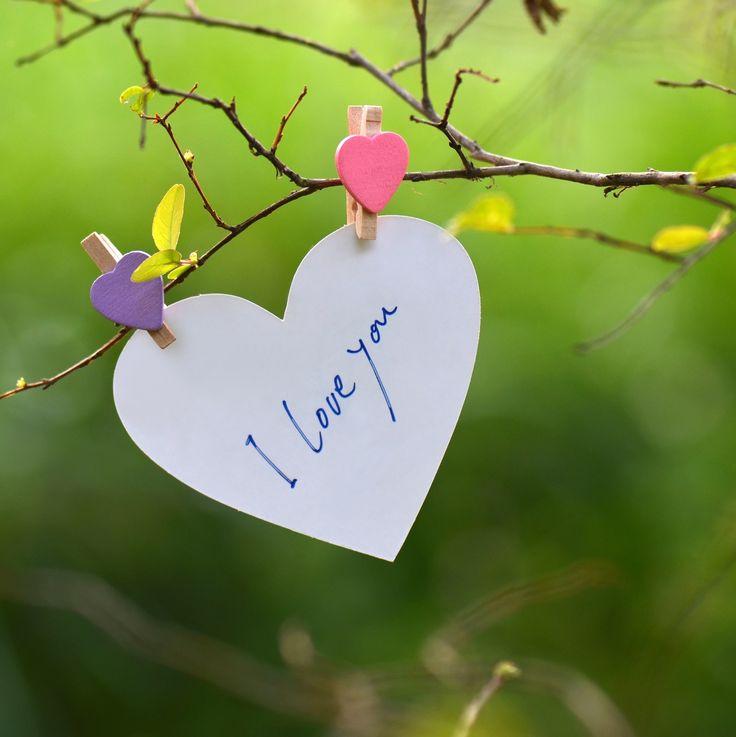 I Love You by shuchun ke - Photo 99932721 - 500px