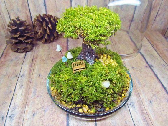 Tree of Life Terrarium Live Moss Raku Fired Tree in by GypsyRaku