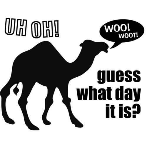 Guess What Day It Is Hump Day Camel Shirt